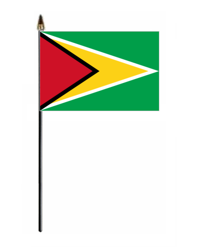 Guyana Country Hand Flag Small