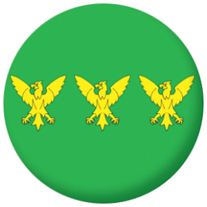 Caernarfonshire County Flag 58mm Button Badge