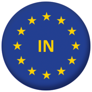European Union (In) Flag 58mm Mirror