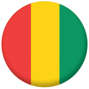 Guinea Country Flag 58mm Mirror