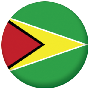 Guyana Country Flag 25mm Pin Button Badge