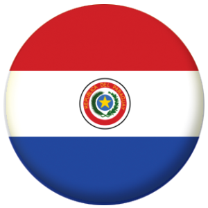 Paraguay Country Flag 58mm Keyring