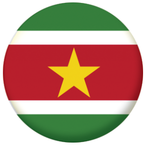 Surinam Country Flag 25mm Flat Back