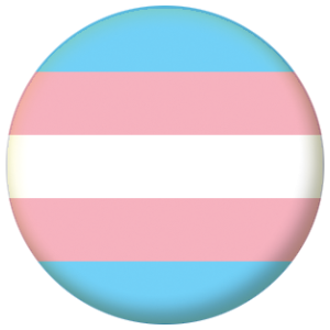 Transgender Pride (pink/blue) Flag 58mm Mirror