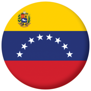 Venezuela State Country Flag 25mm Keyring